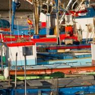 Fischerboote im Hafen von Agaete